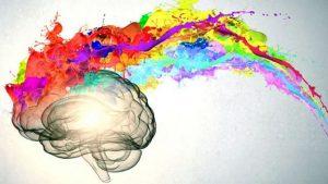 Cérebro: quanto mais cedo o proteger, melhor!