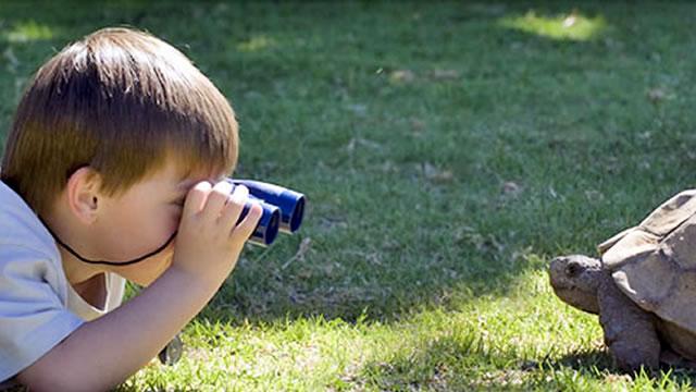 A curiosidade leva-nos longe!